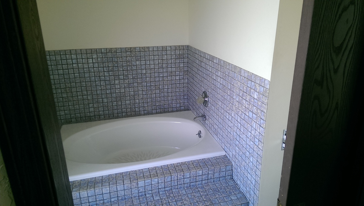 What Is Better In A High End Master Bath One Big Shower Or Shower And Tub