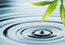 Tiny 7 ways to save money on your rentals through water conservation